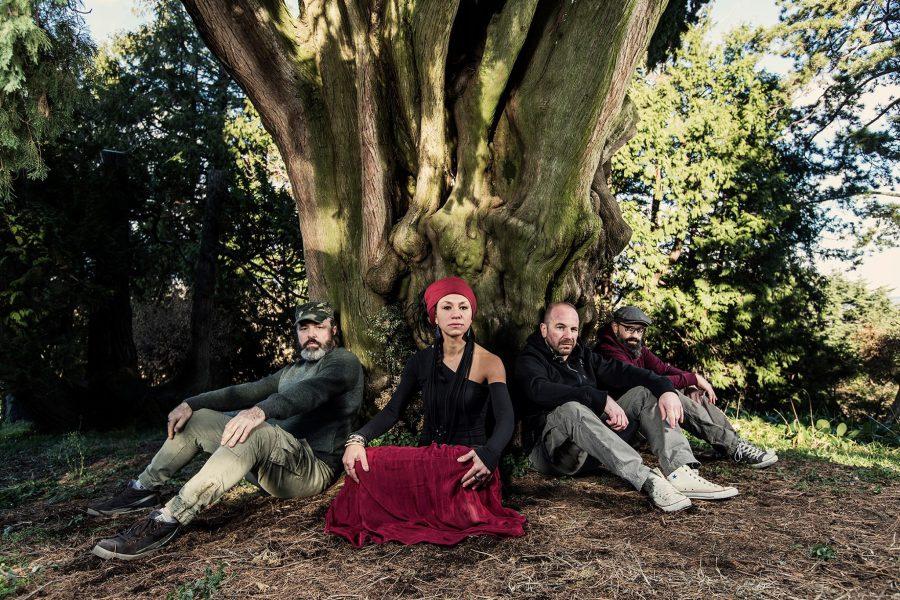 Terzo gruppo: Wicked Dub Division & Michela Grena